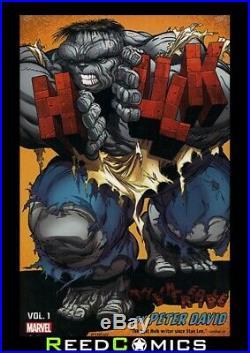 INCREDIBLE HULK BY PETER DAVID OMNIBUS VOLUME 1 DM VARIANT HARDCOVER 1000 Pages